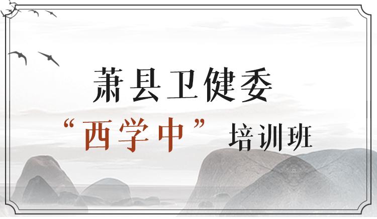 萧县卫健委西学中培训班