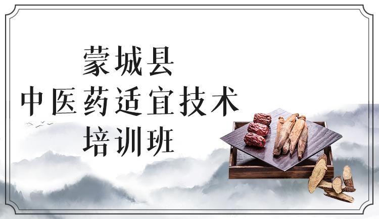 蒙城县中医药适宜技术培训班