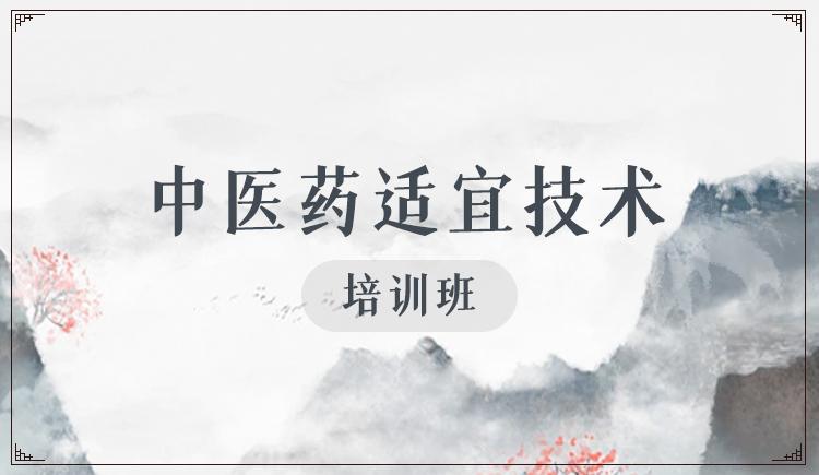 中医适宜技术培训班