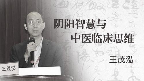 阴阳智慧与中医临床思维—王茂泓
