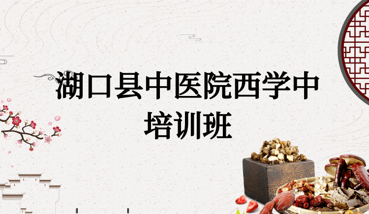 湖口县中医院西学中培训班