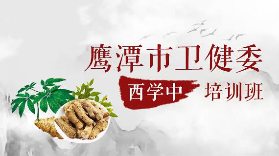 鹰潭市卫健委西学中培训班