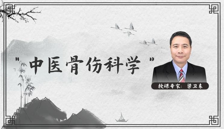 《中医骨伤科学》-梁卫东