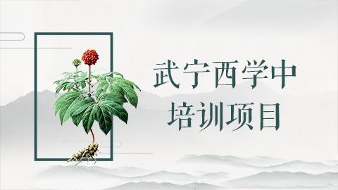 武宁中医院西学中培训班