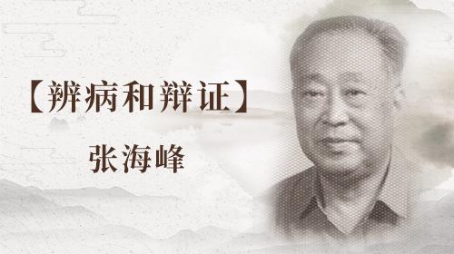 张海峰—辨病和辩证